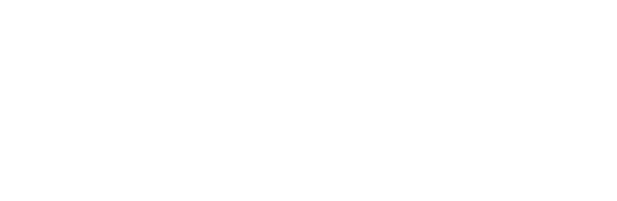 Shinola Logo
