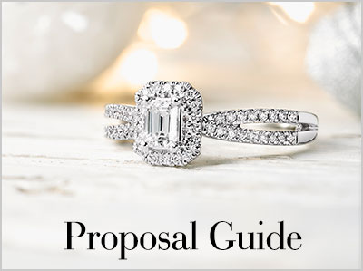 Christmas Proposal Guide