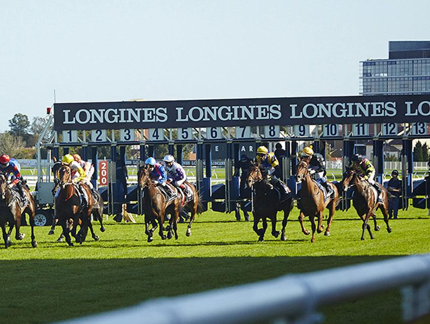Longines & Equestrian Sports